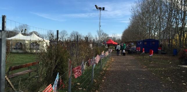 Windhundweihnachtsmarkt 2015